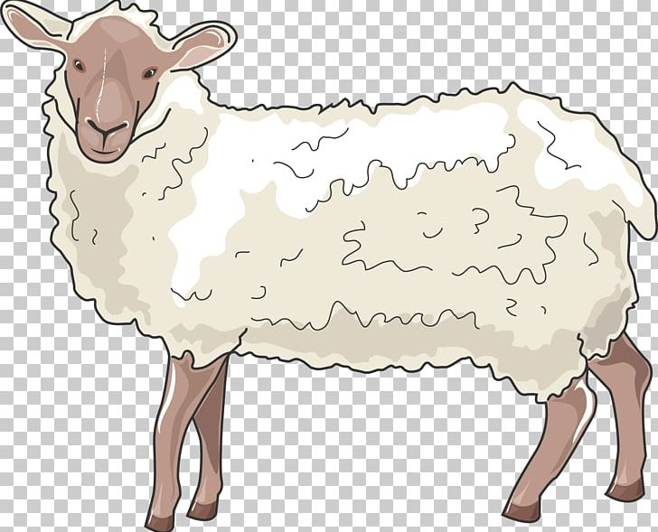 Barbary Sheep Cattle Goat Horn PNG, Clipart, Animal Figure, Animals, Barbary Sheep, Bighorn Sheep, Bovid Free PNG Download