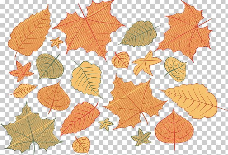 Papua New Guinea Autumn Deciduous PNG, Clipart, Autumn Tree, Autumn Vector, Deciduous, Download, Fallen Leaves Free PNG Download