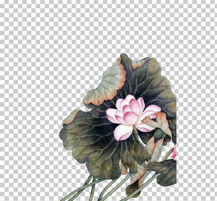 China Chinese Painting Chinese Art Flower Png Clipart