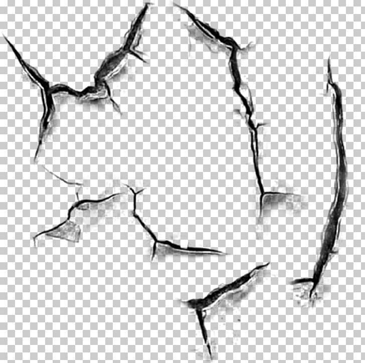 Editing PicsArt Photo Studio PNG, Clipart, Art, Artwork, Beak, Bird, Bitmap Free PNG Download