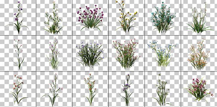 Lavender Rendering Email Cinema 4D Graphics Processing Unit
