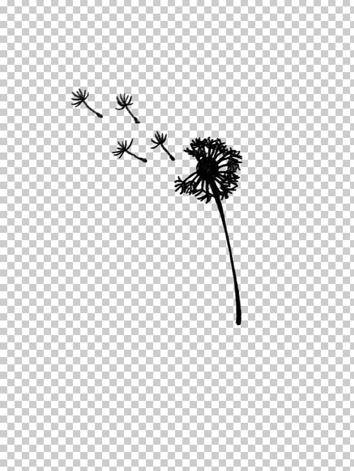 Dandelion Black And White Drawing PNG, Clipart, Black, Black And White, Body Jewelry, Branch, Dandelion Free PNG Download