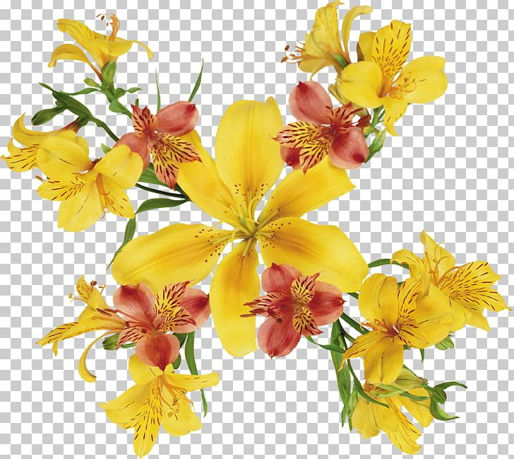Watercolor: Flowers Painting Flowers Lilium PNG, Clipart, Alstroemeriaceae, Arumlily, Color, Cut Flowers, Drawing Free PNG Download