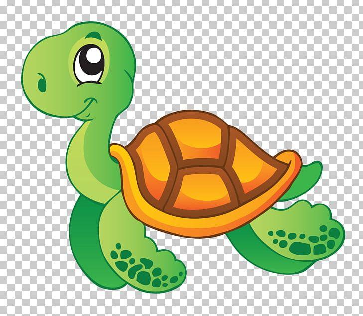 Sea Turtle Aquatic Animal PNG, Clipart, Animal, Animals ...