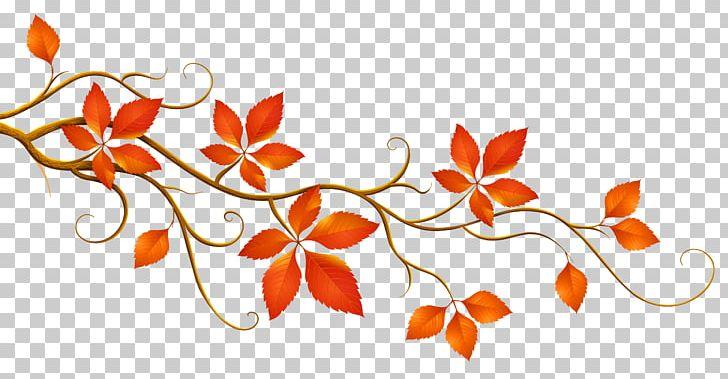 Autumn Leaf Color Branch PNG, Clipart, Autumn, Autumn Leaf Color, Autumn Leaves, Branch, Clipart Free PNG Download