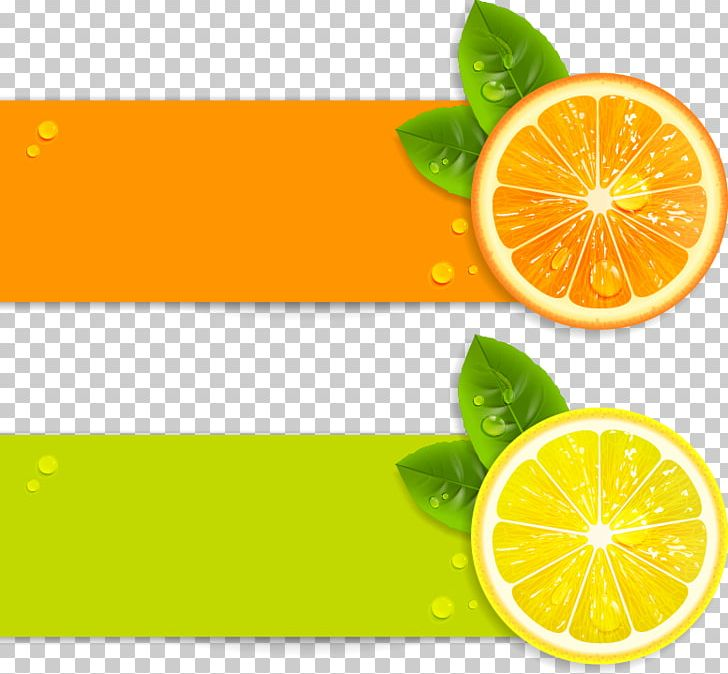 Juice Lemon Illustration PNG, Clipart, Art, Citric Acid, Citrus, Encapsulated Postscript, Euclidean Vector Free PNG Download