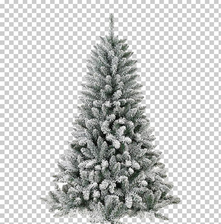 Spruce Christmas Tree Santa Claus Christmas Ornament Christmas Day PNG, Clipart, Bell, Branch, Candle, Christmas Day, Christmas Decoration Free PNG Download