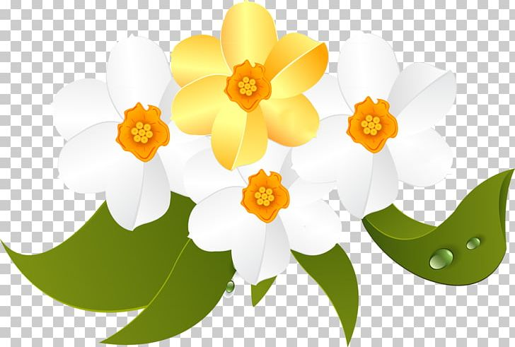 March 8 International Women's Day PNG, Clipart, 8 March, Artistic Inspiration, Computer Wallpaper, Desktop Wallpaper, Flower Free PNG Download