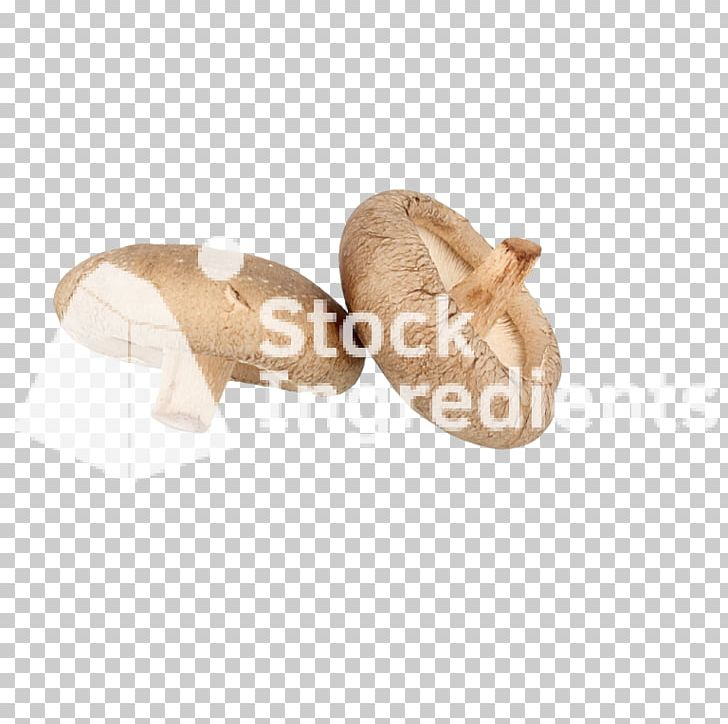 Shoe PNG, Clipart, Miscellaneous, Others, Shoe Free PNG Download