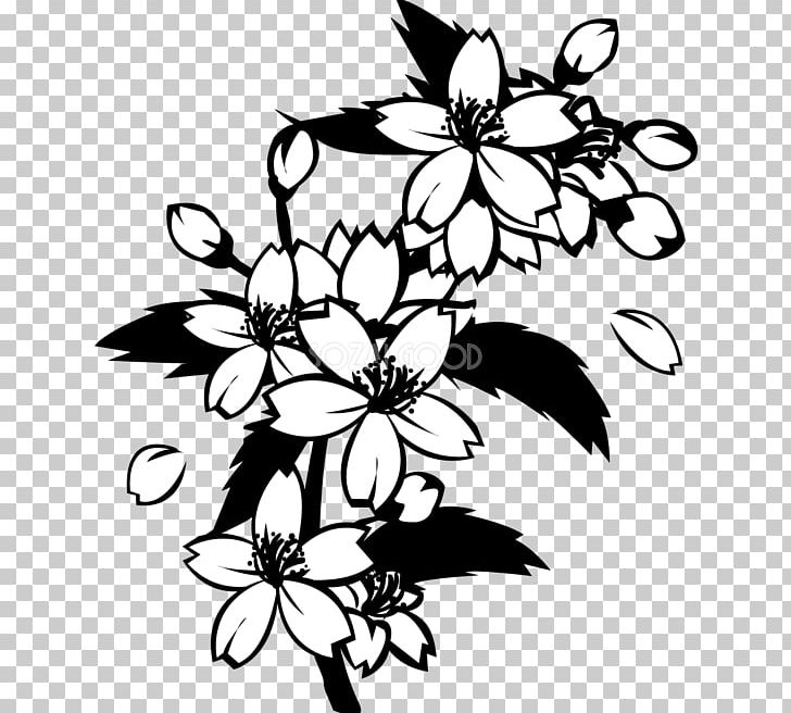 Black And White Monochrome Painting Cherry Blossom PNG ...