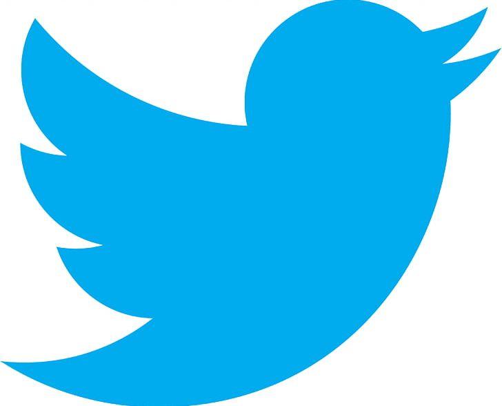 Social Media Kingsport Theatre Guild Logo Computer Icons PNG, Clipart, Aqua, Area, Azure, Beak, Blue Free PNG Download