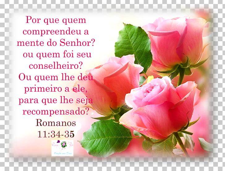 Romanos 12:21 - Papel de Parede | Gospel 10