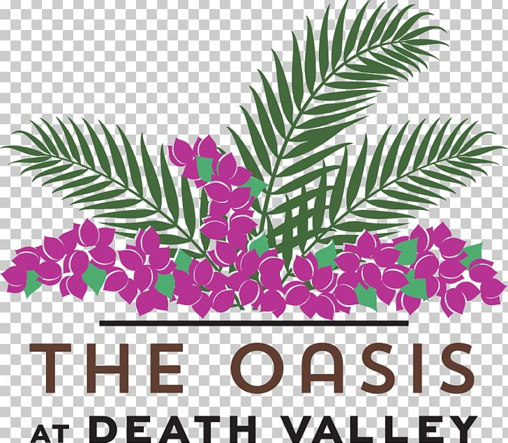 The Oasis At Death Valley Furnace Creek The Inn At Death Valley Resort Hotel PNG, Clipart, Area, Coupon, Death, Death Valley, Death Valley National Park Free PNG Download
