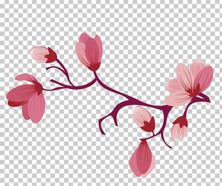 Cherry Blossom Flower PNG, Clipart, Blossom, Branch, Cherry, Cherry Blossom, Clip Art Free PNG Download