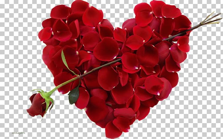 Valentine's Day Happiness Holiday February 14 Wish PNG, Clipart, Cut Flowers, Download, February 14, Floristry, Flower Free PNG Download