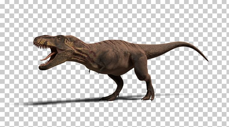 Tyrannosaurus Jurassic Park: Operation Genesis Ceratosaurus Velociraptor Dinosaur PNG, Clipart, Ceratosaurus, Dinosaur, Extinction, Fauna, Game Free PNG Download