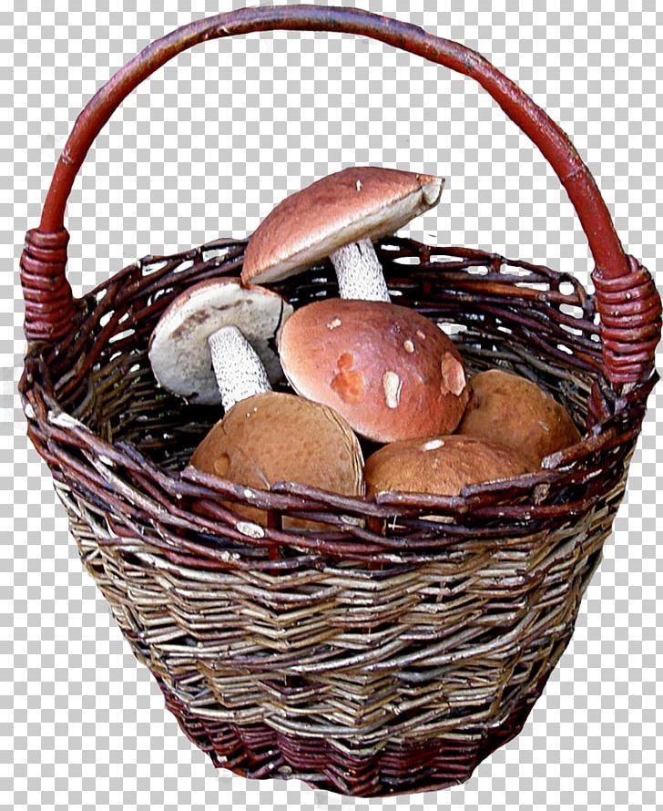 Clothing Accessories Belt Handbag Polyvore PNG, Clipart, Aspen Mushroom, Autumn, Basket, Belt, Clothing Free PNG Download