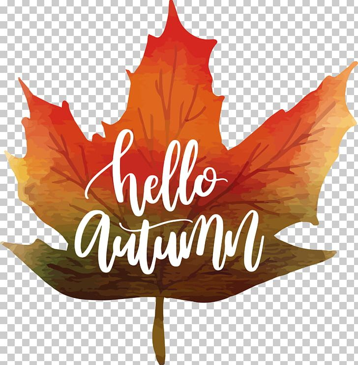 Maple Leaf Autumn Watercolor Painting Icon Png Clipart Aut Cdr Color Encapsulated Postscript Fall Leaves Free