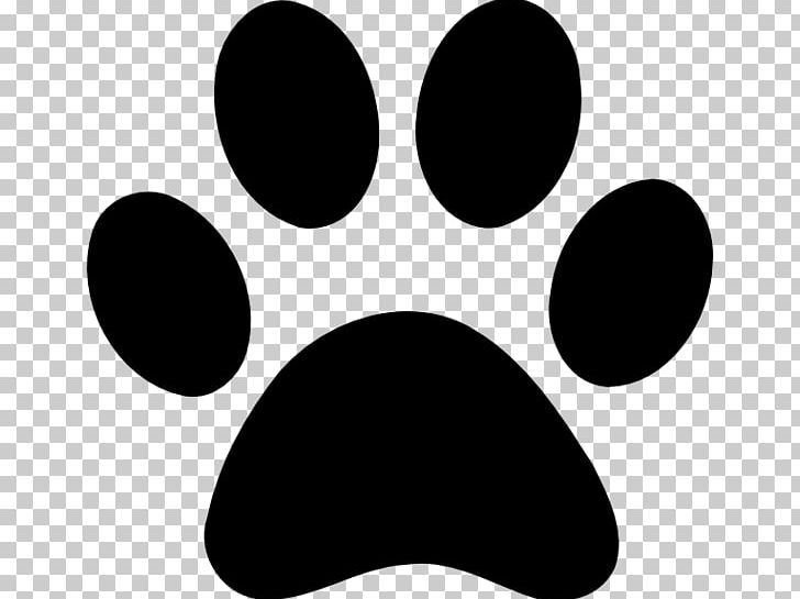 Paw Printing Rabbit Png Clipart Animals Black Black And White Circle Computer Icons Free Png Download They must be uploaded as png files, isolated on a transparent background. imgbin com
