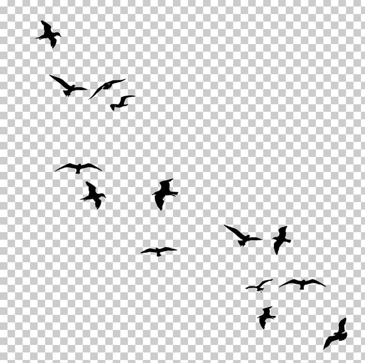 Drawing Birds Flock PNG, Clipart, Animal Migration, Animals, Beak, Bird Flight, Bird Migration Free PNG Download