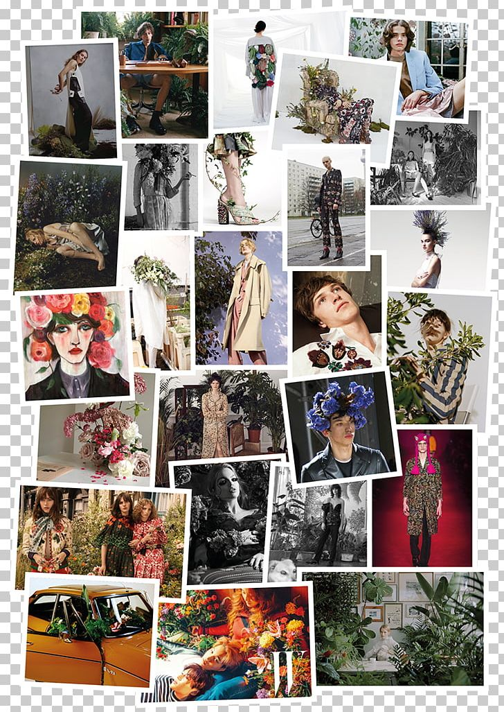 Collage Photomontage PNG, Clipart, Art, Collage, Ignorance, Love, Photomontage Free PNG Download