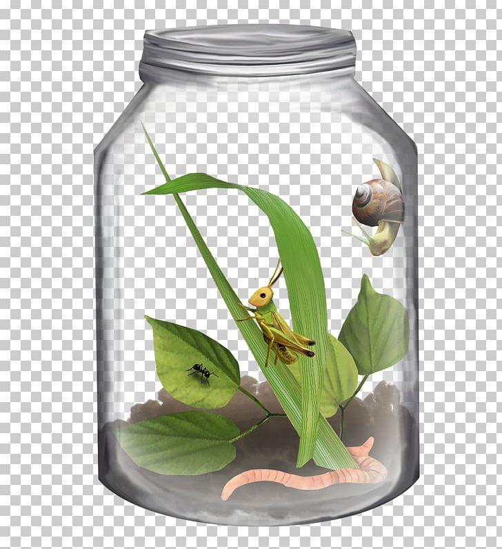 Bottle Jar PNG, Clipart, Animals, Bottle, Bottles, Cricket