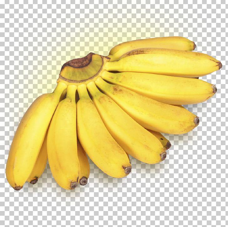 Lady Finger Banana Dwarf Cavendish Banana Cooking Banana Fruit PNG, Clipart, Banana, Banana Family, Calorie, Cavendish Banana, Cooking Banana Free PNG Download