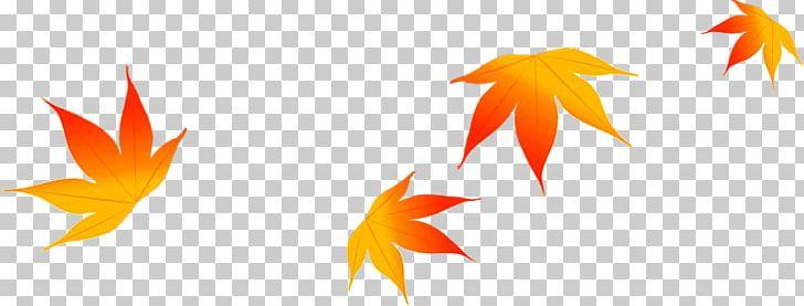 Maple Leaf Autumn PNG, Clipart, Autumn, Autumn Leaves, Beautiful, Beauty Salon, Computer Free PNG Download