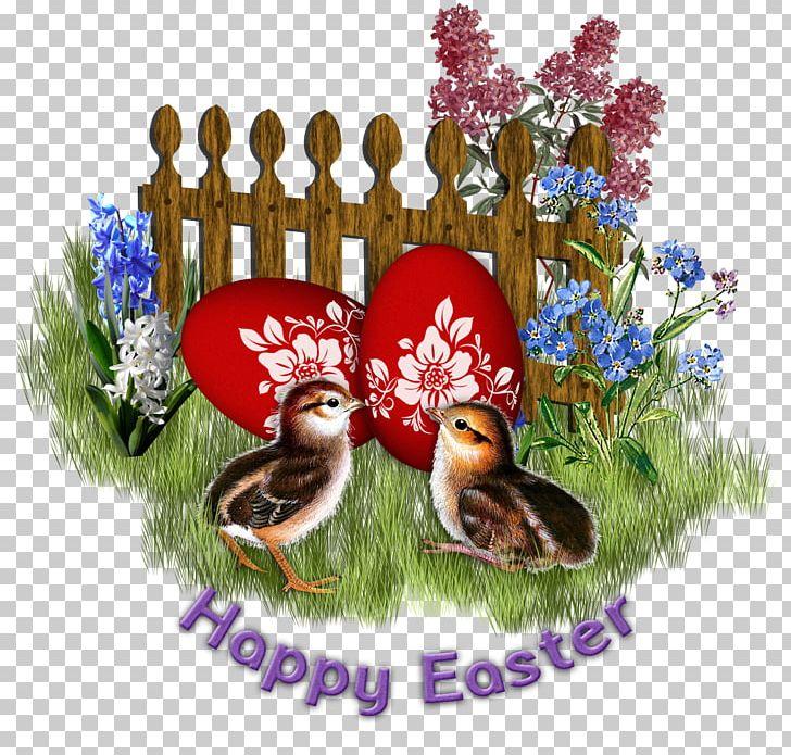 Pillow Easter Kifaranga PNG, Clipart, Blog, Cushion, Cuteness, Easter, Egg Free PNG Download