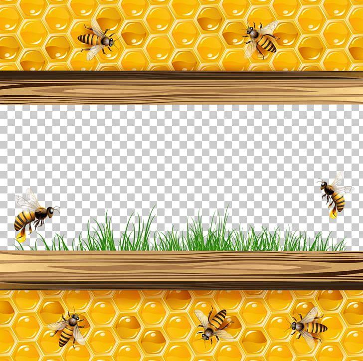 Honey Bee Honeycomb Illustration Png Clipart Bee Computer