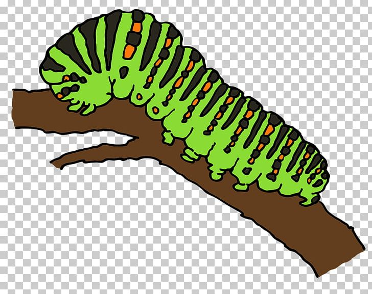 Caterpillar Butterfly Worm Png Clipart Animaatio Animals Butterflies And Moths Butterfly Cartoon Free Png Download