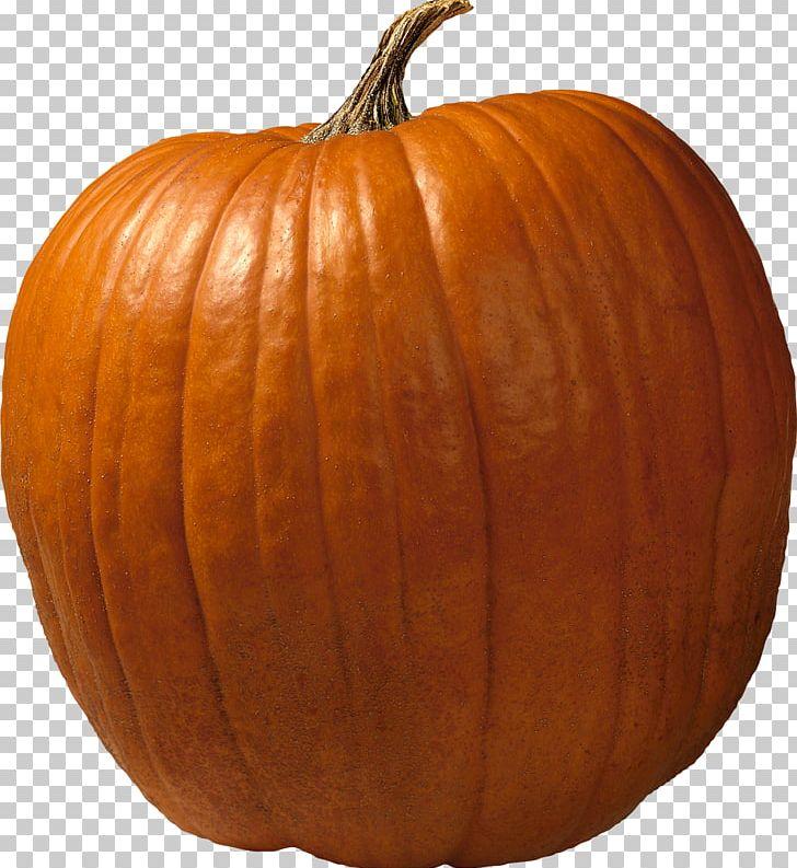 Big Pumpkin Pumpkin Pie Cucurbita Maxima Giant Pumpkin PNG, Clipart, Big Pumpkin, Calabaza, Carving, Commodity, Cucumber Gourd And Melon Family Free PNG Download