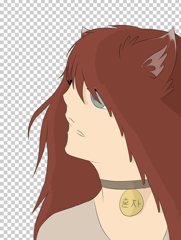 Horse Hair Coloring Human Hair Color Brown Hair PNG, Clipart, Anime, Brown, Brown Hair, Cartoon, Color Free PNG Download