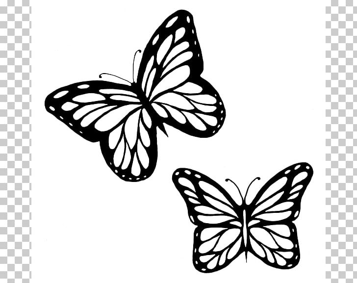 Butterfly outline monarch. Drawing png clipart brush