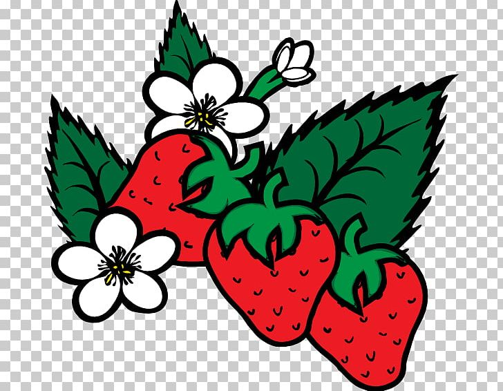 Virginia Strawberry Shortcake Coloring Book Fruit PNG, Clipart, Art,  Artwork, Candy, Cartoon Strawberries, Color Free PNG
