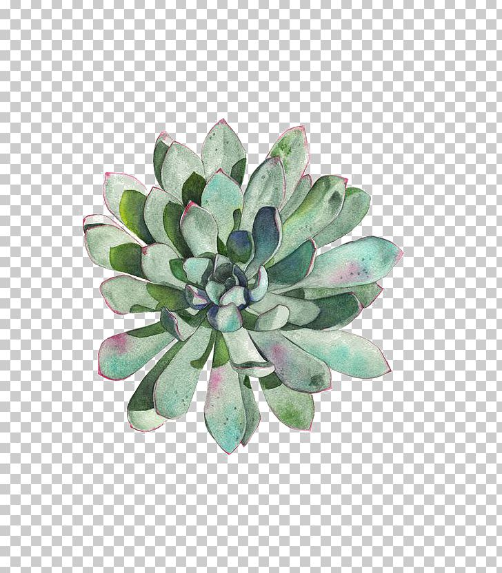 Paper Succulent Plant Watercolor Painting Printmaking