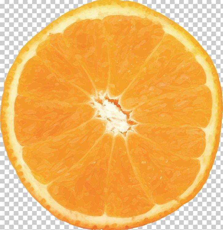 Orange Juice Orange Slice Food Valencia Orange PNG, Clipart, Bitter Orange, Blood Orange, Citric Acid, Citrus, Clementine Free PNG Download