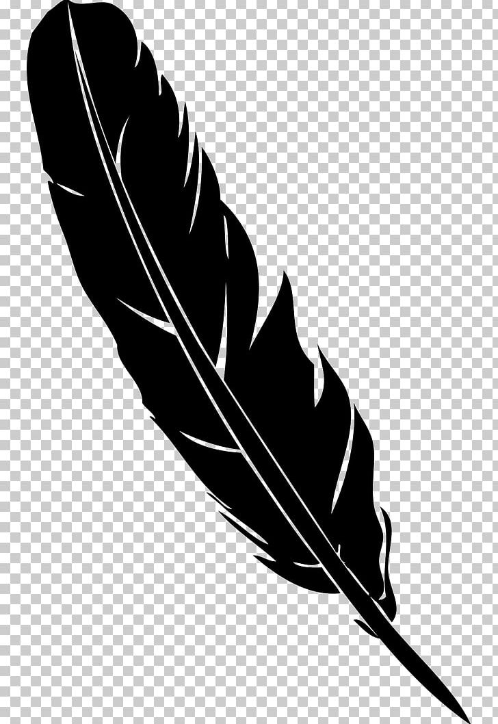 Feather Pen Quill Euclidean PNG, Clipart, Adobe Illustrator, Background Black, Black And White, Black Background, Black Hair Free PNG Download