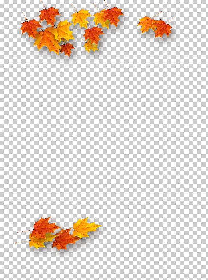 Maple Leaf Autumn PNG, Clipart, Autumn, Autumn Tree, Deciduous, Defoliation, Download Free PNG Download