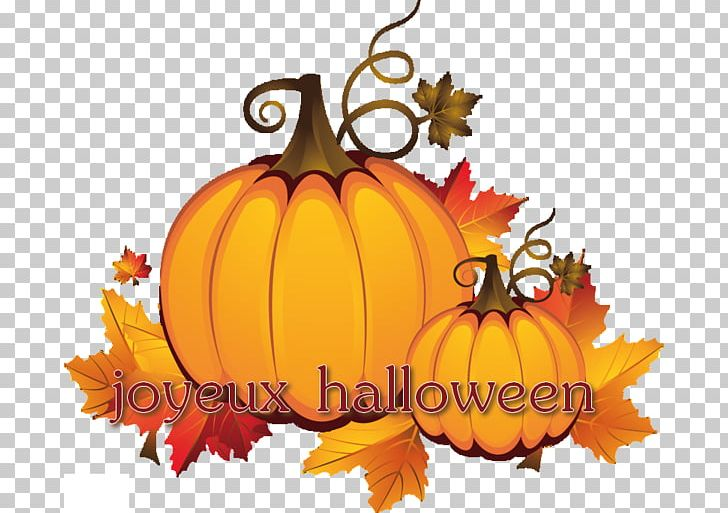 Jack-o'-lantern Pumpkin Halloween PNG, Clipart,  Free PNG Download