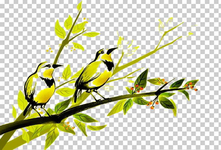 Bird Painting Parrot Photography Illustration PNG, Clipart, Animals, Art, Bird, Bird Cage, Bird Nest Free PNG Download