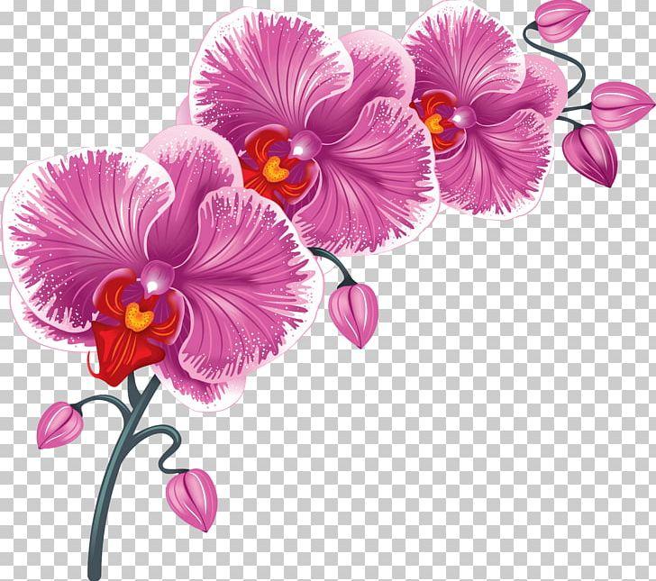 Flower Desktop PNG, Clipart, Clip Art, Cut Flowers, Desktop Wallpaper, Download, Encapsulated Postscript Free PNG Download