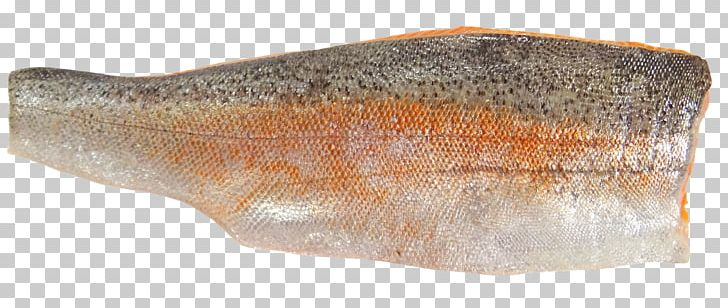Sea Trout Fish Fillet Seafood PNG, Clipart, Animals, Brown Trout, Fillet, Fish, Fish Fillet Free PNG Download