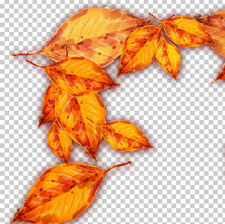 Autumn Deciduous Leaf PNG, Clipart, Autumn, Autumn Leaves, Autumn Tree, Banana Leaves, Concepteur Free PNG Download
