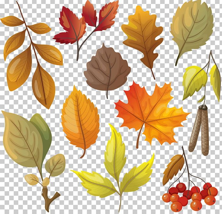 Autumn Leaf Color Autumn Leaf Color Yellow PNG, Clipart, Art, Autumn, Autumn Leaf Color, Autumn Leaves, Autumn Tree Free PNG Download