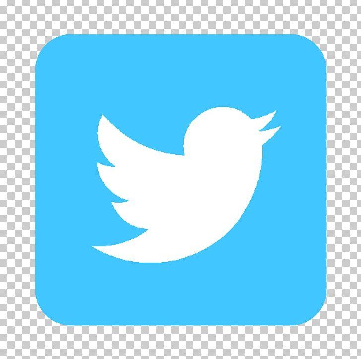 Social Media Computer Icons Blog Facebook Google+ PNG, Clipart, Activities Run It, Beak, Bird, Blog, Blue Free PNG Download