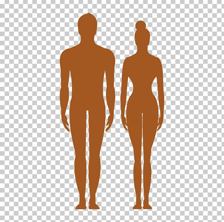 Human Body Silhouette PNG, Clipart, Arm, Back, Body, Body Vector, Business Man Free PNG Download
