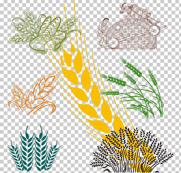 Wheat Cartoon PNG, Clipart, Bread, Encapsulated Postscript, Feather, Flower, Food Free PNG Download