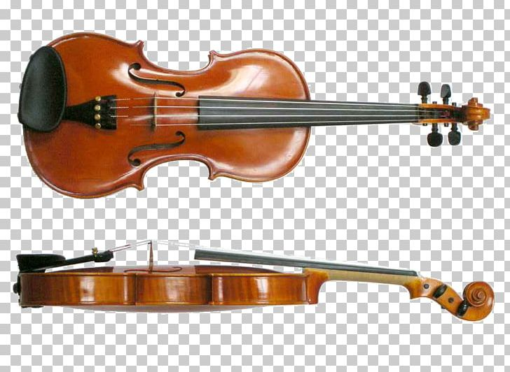 Musical Instruments Violin String Instruments Viola PNG, Clipart, Acoustic Electric Guitar, Bass Violin, Bowed String Instrument, Cellist, Cello Free PNG Download