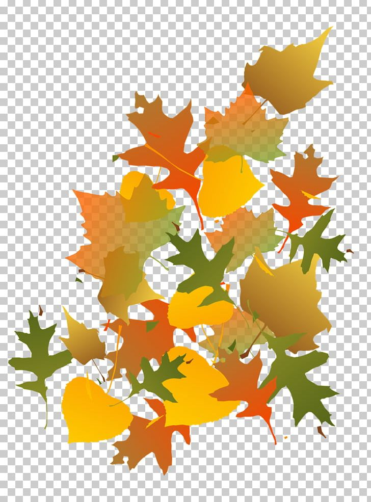Maple Leaf Autumn PNG, Clipart, Autumn, Branch, Flowering Plant, Leaf, Maple Free PNG Download